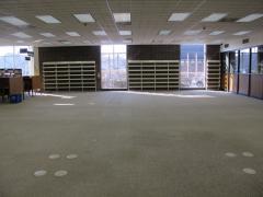 carpet info commons